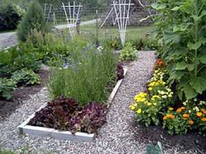 kitchen-garden_home