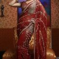 Modern-traditional-indian-saree-collection-7