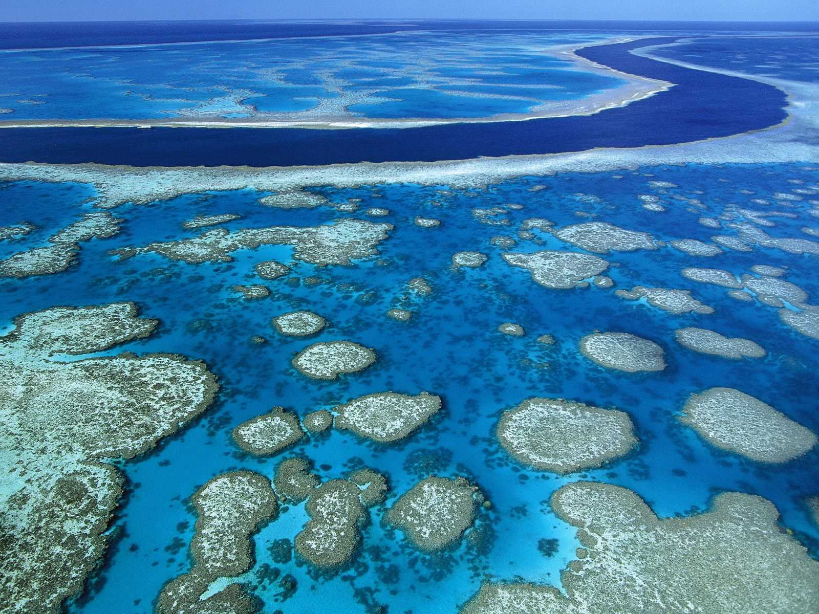 great barrier reef in australia is largest coral reefs on earth