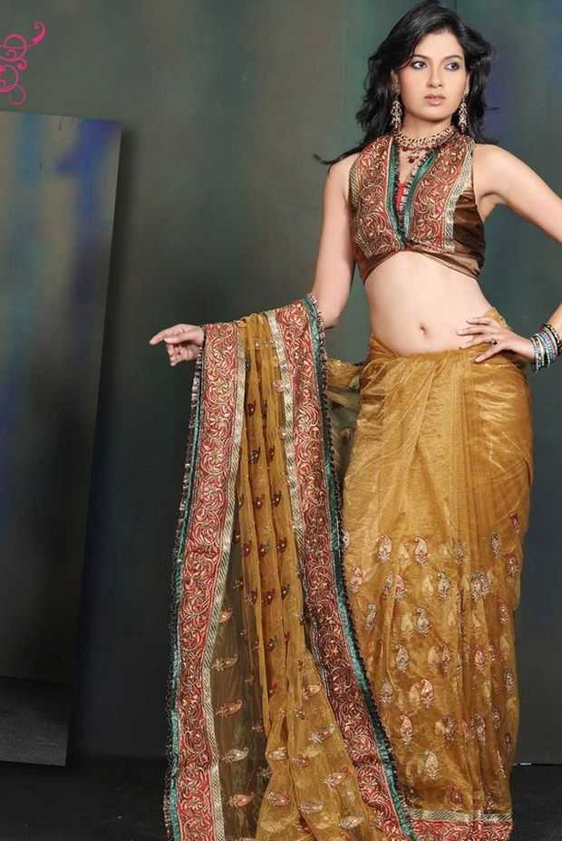 Saree-Blouse-Designs-2011-`