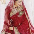 Stylish-Bridal-Saree-designs-14