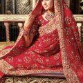 Stylish-Bridal-Saree-designs-5