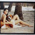 daboo-ratnani-bolloywood-celebrity-2013-calender-sonakshi-sinha