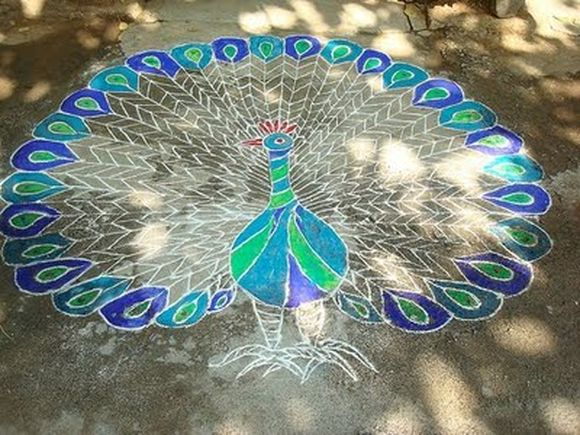 new-and-latest-peacock-rangoli-designs-4